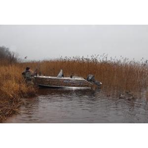 Продаем лодку (катер)   Berkut S-C